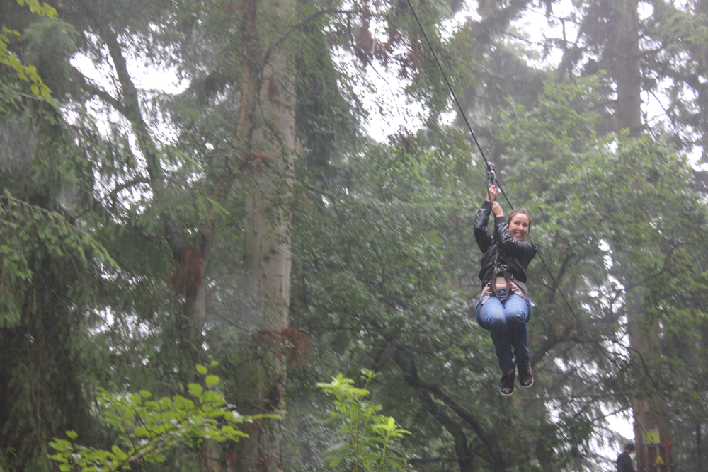 Abbey College Cambridge Summer School Students Go Ape